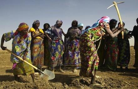 La lutte des femmes du Sahel pour manger