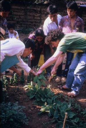 Implantation du premier jardin à Chinique au Guatemala (photo : JP Nicolas).