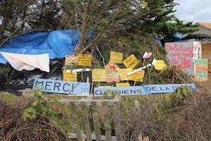 Victoire pour la Zad contre  le projet de port de plaisance de Brétignolles-sur-Mer, en Vendée. © Justine Guitton-Boussion/Reporterre