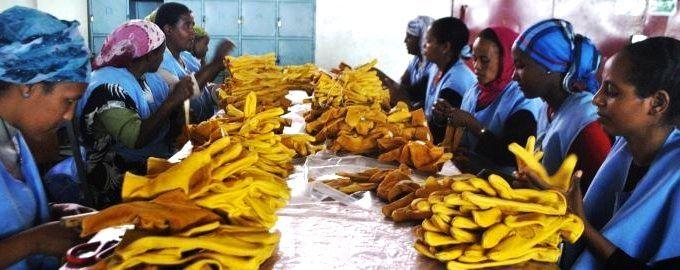 Bas salaires : l'Ethiopie attire les multinationales