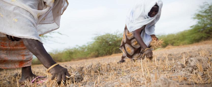 Stoppons l'accord de partenariat qui affaiblirait encore l'Afrique de l'Ouest