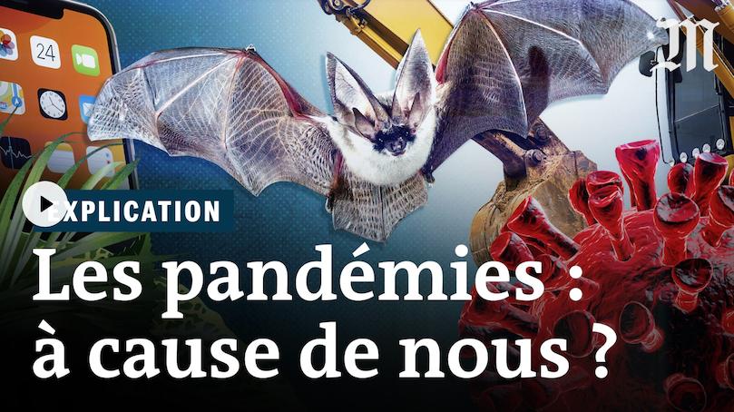 """En vidéo sur Le Monde : """"Les pandémies à cause de nous ?"""""""