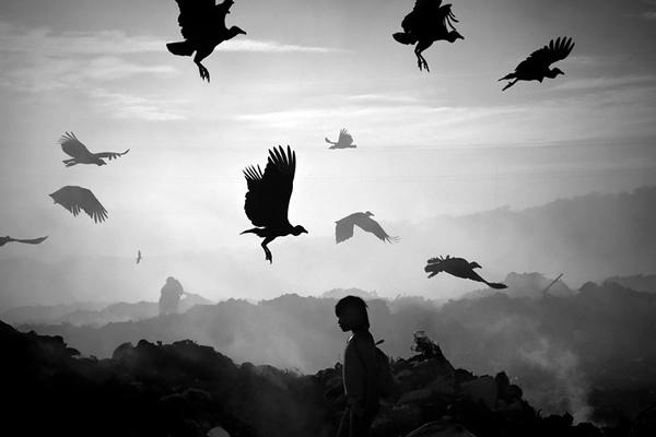Photojournalisme : Meridith Kohut
