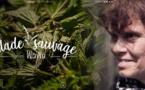 Sur la websérie Sideways : à la découverte des plantes sauvages avec Wawa