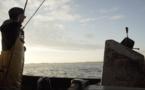 Documentaire : la lutte puis la victoire contre la pêche électrique