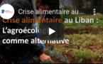 Au Liban, l'agroécologie contre la crise alimentaire