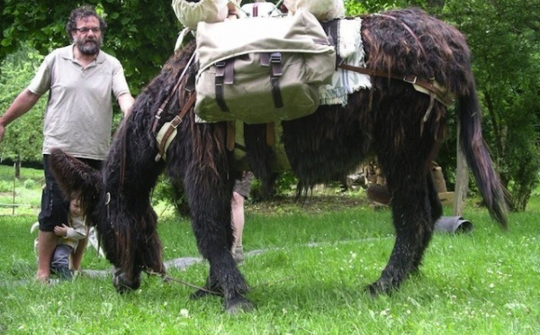 A Evres, la culture passe par les ânes