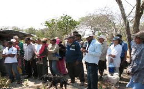 Lutte pour la survie à Barranquilla