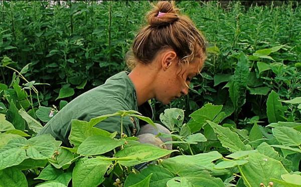 Anaïs, jeune agricultrice en Bretagne