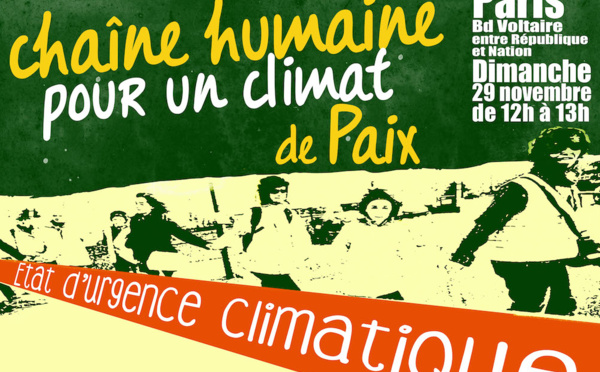 Etat d'urgence climatique : la mobilisation malgré tout