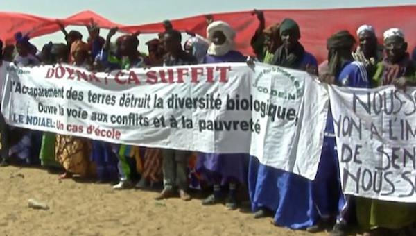 Accaparement des terres : la résistance des paysans africains (webdocumentaire)