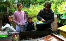 Tout savoir sur le « Compost citoyen »