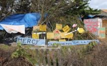 Luttes écologistes : Reporterre liste les bonnes nouvelles de l'été