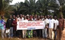 Des paysans du Sud en lutte contre Bolloré