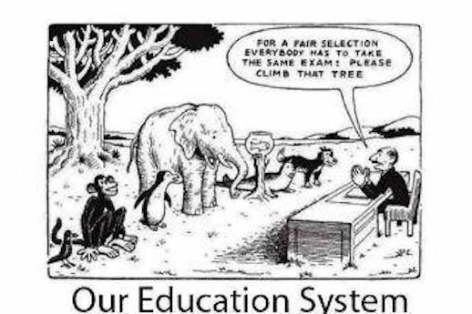 """Même examen pour tout le monde au nom de l'égalité """" Grimpez sur cet arbre ! """" -  The LOLBRARY"""
